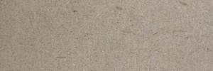 naturali arenaria fossile