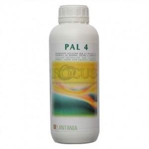 PAL 4 - mycie gruntowne spieków kwarcowych